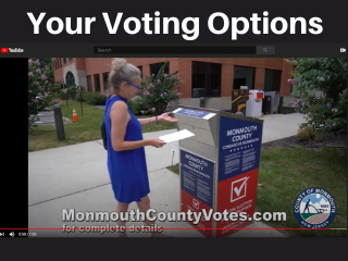 Video_ Your Voting Options