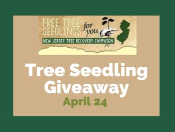 April 24_ Free Tree Seedlings (1)